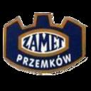 zamet-przemkow