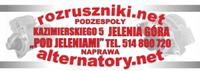 rozruszniki.net
